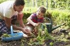 Seven Ways to Plan Ahead in the Garden and Reduce the Risk of Pain