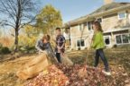 Fall Activities that Can Cause Back Pain