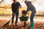 4 tips to plant and rake without the ache - CCA