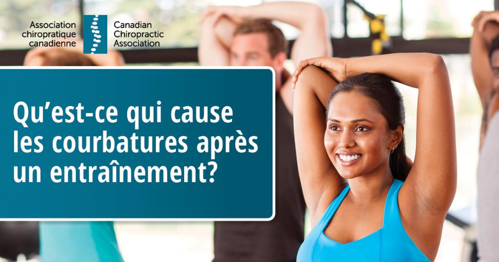 Qu'est-ce qui cause les courbatures après un entraînement?